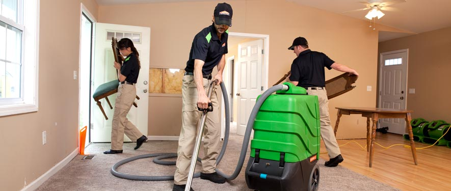 Highland Park, IL cleaning services